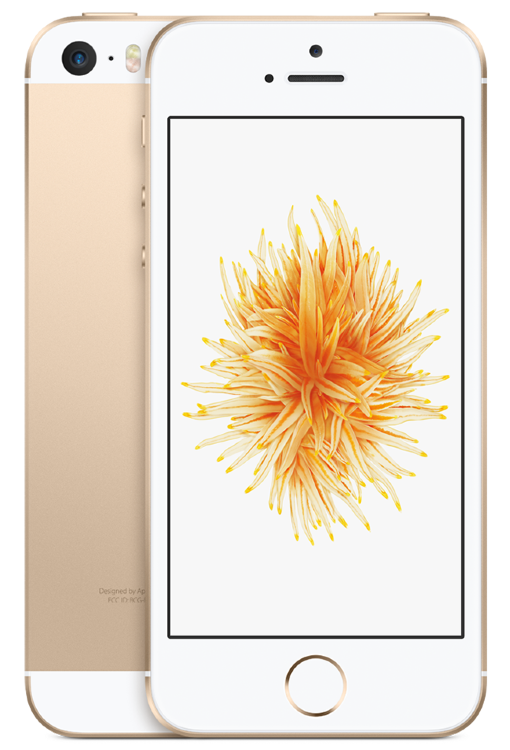 Apple iPhone SE 16Gb Gold (Золотой)